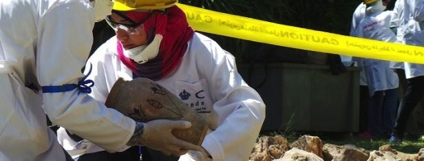 Egyptian Heritage Rescue Training Landscape